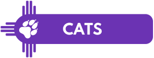 Mobile Vet care for cats